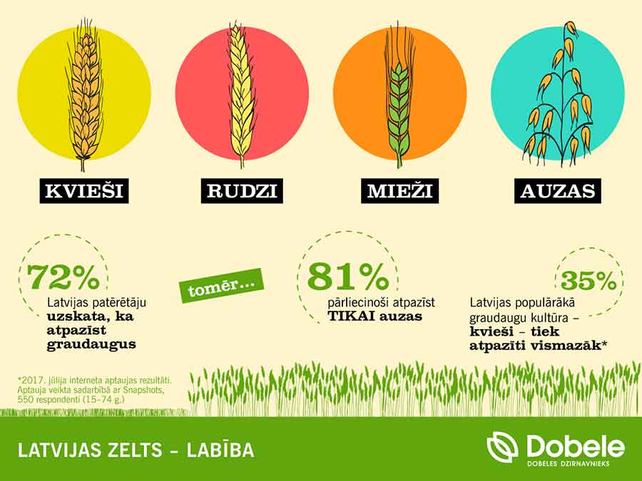 Rudzi vai tomēr kvieši? Latvijas iedzīvotājiem viduvējas zināšanas par graudaugiem